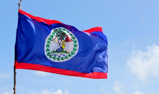 01 Belize flag