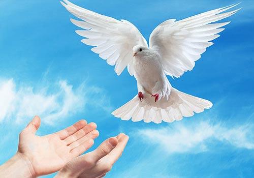 Resultado de imagen para imagen al espiritu santo