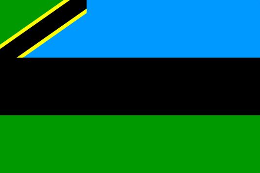 Flag_tz-sansibar_2005
